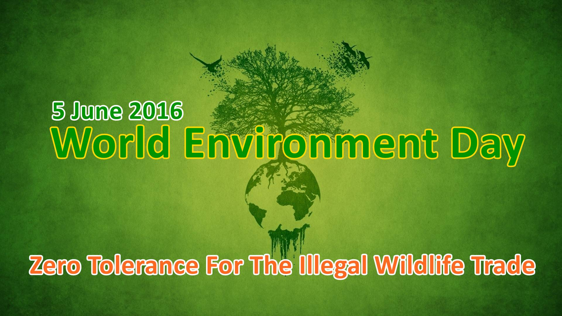 World Environment day 2016 Theme
